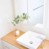 port lincoln real estate bathroom